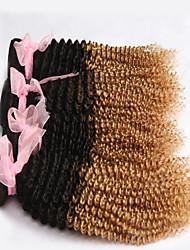"3pcs / lot 12 ""-26"" brasilianisches reines Haar, Farbe 1b / 27 tiefe Welle, ombre lockiges Haar Erweiterungen"