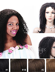 12''-26''Summer Fashion Long Kinky Curly Indian Virgin Hair Lace Front Wigs With Baby Hair For Black Women