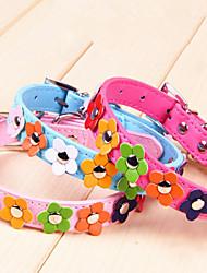 BQ Dog Collar Dotted Flowers