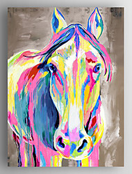 Oil Painting Color Cow Hand Painted Canvas with Stretched Framed Ready to Hang