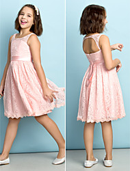 Knee-length Lace Junior Bridesmaid Dress - Pearl Pink A-line Scoop