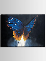 Hand-Painted ,Modern Blue Butterfly Oil Painting ,Stretched Canvas, One Panel