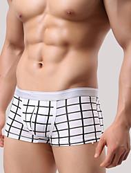 Сексуальные платья - MEN - Нижнее белье ( Хлопок Со стандартной талией - Шорты
