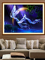 5D Phoenix Fly Together Diamond Painting Figure Painting The Living Room Fitted Stone Diamond Stitch