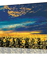 DIY digitales Ölgemälde Frame Familie Spaß Malerei alle von mir Sonnenblume - die überwiegende x5003