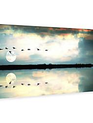 bonita puesta de sol paisaje pintura al óleo paisaje diseño precio barato