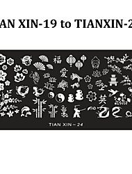 6pcs Nail Art Stamping Plates Polish Print Stencil Nail Stamp Template DIY Beauty Manicure Tools (Tian Xin 19-24)