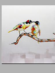 одного современного абстрактного чистого ничья рука бескаркасных декоративной живописи сороки