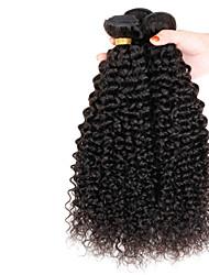 afro kinky hair virgin burmese hair kinky curly braiding hair 3 bundles lot 300g per pack