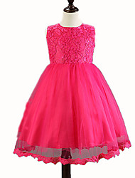 Girl's Blue / Pink / Purple / Red / White Dress , Lace Polyester Summer
