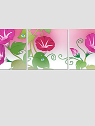 fashion 3Pcs Hot Sell Modern Wall Painting flower Home Decorative wedding Art Picture Paint on Canvas Prints