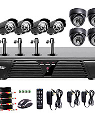 Liview® Voll 960H 8CH DVR und Outdoor / Indoor 600 TVLine Kamera-System