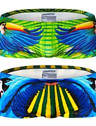 Men's Nylon / Polyester Floral Swim Shorts