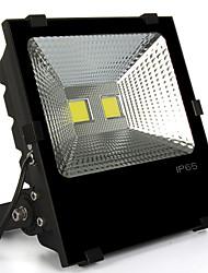 100W Focos LED 2 LED de Alta Potencia 10000 lm Blanco Cálido / Blanco Fresco Decorativa / Impermeable AC 85-265 V 1 pieza