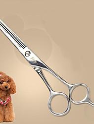pet fornecimentos de reparação estética cães cabelos cortados gerais