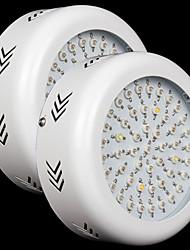 150W Lampes Horticoles LED 150 LED Haute Puissance 3500 lm Etanches AC 85-265 V 2 pièces