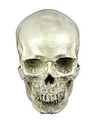 Mask Skeleton/Skull Festival/Holiday Halloween Costumes White Solid Mask Halloween Unisex