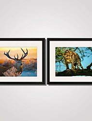 Paisagem / Animal Impressão de Arte Emoldurada / Quadros Emoldurados / Conjunto Emoldurado Wall Art,PVC PretoCartolina de Passepartout