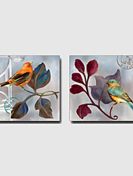Hand-Painted Leisure / Floral/Botanical / AnimalModern / Mediterranean / European Style Two Panels Canvas Oil Painting For Home Decoration