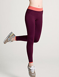Women Solid Color Legging,Cotton Spandex Medium