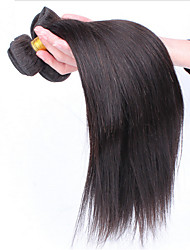 Protea Hair Products Grade 6A Malaysian Virgin Hair Straight 3Pcs/Lot Malaysian Human Hair Malaysian Hair Bundles