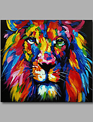 "Stretched (ready to hang) Hand-Painted Oil Painting 24""x24"" Canvas Wall Art Modern Animals Pop Art Lion"