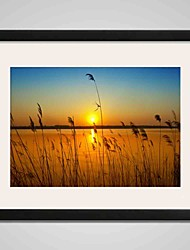 Sunset  and Reeds Canvas Print Art 40x50cm Landcape Wall Art for Home Decoration With Black Frame Ready To Hang