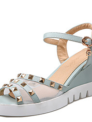 Women's Shoes Wedge Heel/Platform/Sling back/Open Toe Sandals/Heels Office & Career/Dress Blue/Pink/White