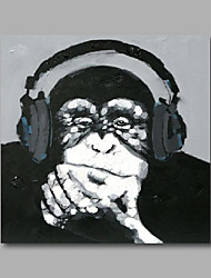 "Stretched (ready to hang) Hand-Painted Oil Painting 24""x24"" Canvas Wall Art Modern Pop Art Animals Monkey"