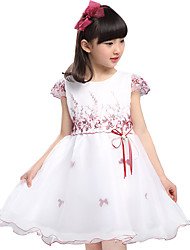 Girl's Summer Cotton Embroidery Floral Princess Dress