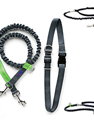Dog Collar / Leash / Slip Lead Adjustable/Retractable / Running Red / Green / Blue Nylon