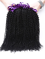 3 Bundles Brazilian Virgin Hair Kinky Curly Brazilian Human Hair Weave 7A Brazilian Rosa Queen Hair Products