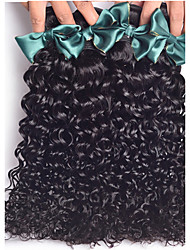 4 Bundles Brazilian Virgin Hair Rosa Hair Products Kinky Curly  Brazilian Kinky Curly Human Hair Wave Virgin Hair