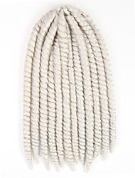 White Havana Twist Braids Hair Extensions 12inch Kanekalon 2 Strand 75-80g/pcs gram Hair Braids