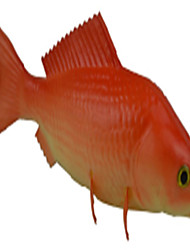 Simulation Of Red And Small Carp
