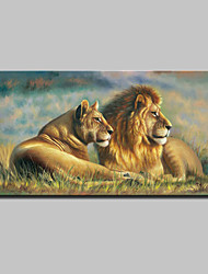 Large Lion King Oil Painting Animal Landscape Picture Print On Cotton Canvas One Panel Ready to Hang 70x140cm