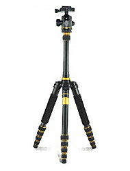 Qingzhuangshidai Aluminum alloy materialTake the weight of 2-8kg camera tripod monopods