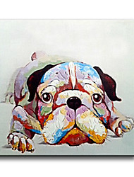 100% Handpainted High Quality Modern Picture On Canvas Wall Art Oil Painting Cute Doggy