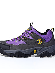 Camssoo Women's Hiking Mountaineer Shoes Spring / Summer / Autumn / Winter Damping / Wearable Shoes Blue / Purple