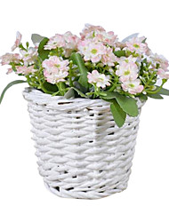 Silk Daisies / Others Artificial Flowers