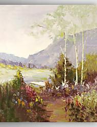 Ручная роспись Пейзаж Modern,1 панель Холст Hang-роспись маслом