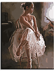 Pictures Painting By Numbers Hand Painted Oil Painting Wall Sticker Ballet Queen with Stretched Frame Ready to Hang