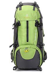 65L Backpacking Pack Camping & Hiking / Climbing Outdoor Multifunctional Green / Black / Blue / Orange Nylon