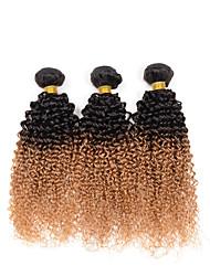 Омбре Индийские волосы Kinky Curly 3 предмета волосы ткет