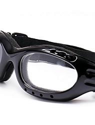 Lunettes d'alpinisme moto lunettes lunettes de ski lunettes d'équitation en plein air