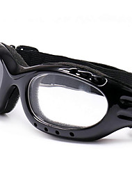 gafas de alpinismo motocicleta gafas gafas de esquí gafas de montar al aire libre
