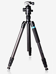 Carbon Fiber Tripod Professional Studio Removable One-Man Studio SLR Camera Tripod