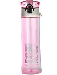 MOTE PP Water Bottle Green / Pink