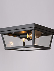 2 Heads Modern Countryside Style Glass with Metal Ceiling Lamp Decorate for the Entry / Garage / Hallway Ceiling Light