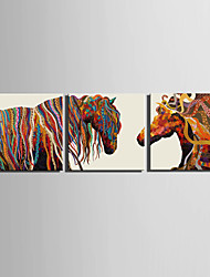 E-HOME® Stretched Canvas Art Color Horse Decoration Painting  Set of 3